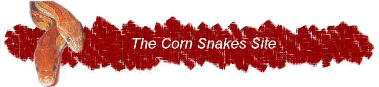 The Corn Snakes Site